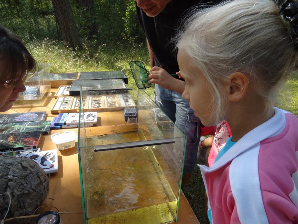 Med Naturskyddsföreningen vid dammen